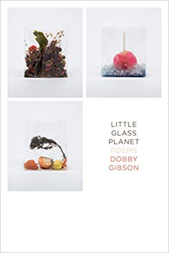 Little Glass Planet: Poems