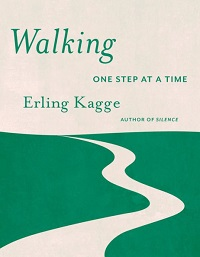 Walking in Everyday Life | Social Sciences Reviews