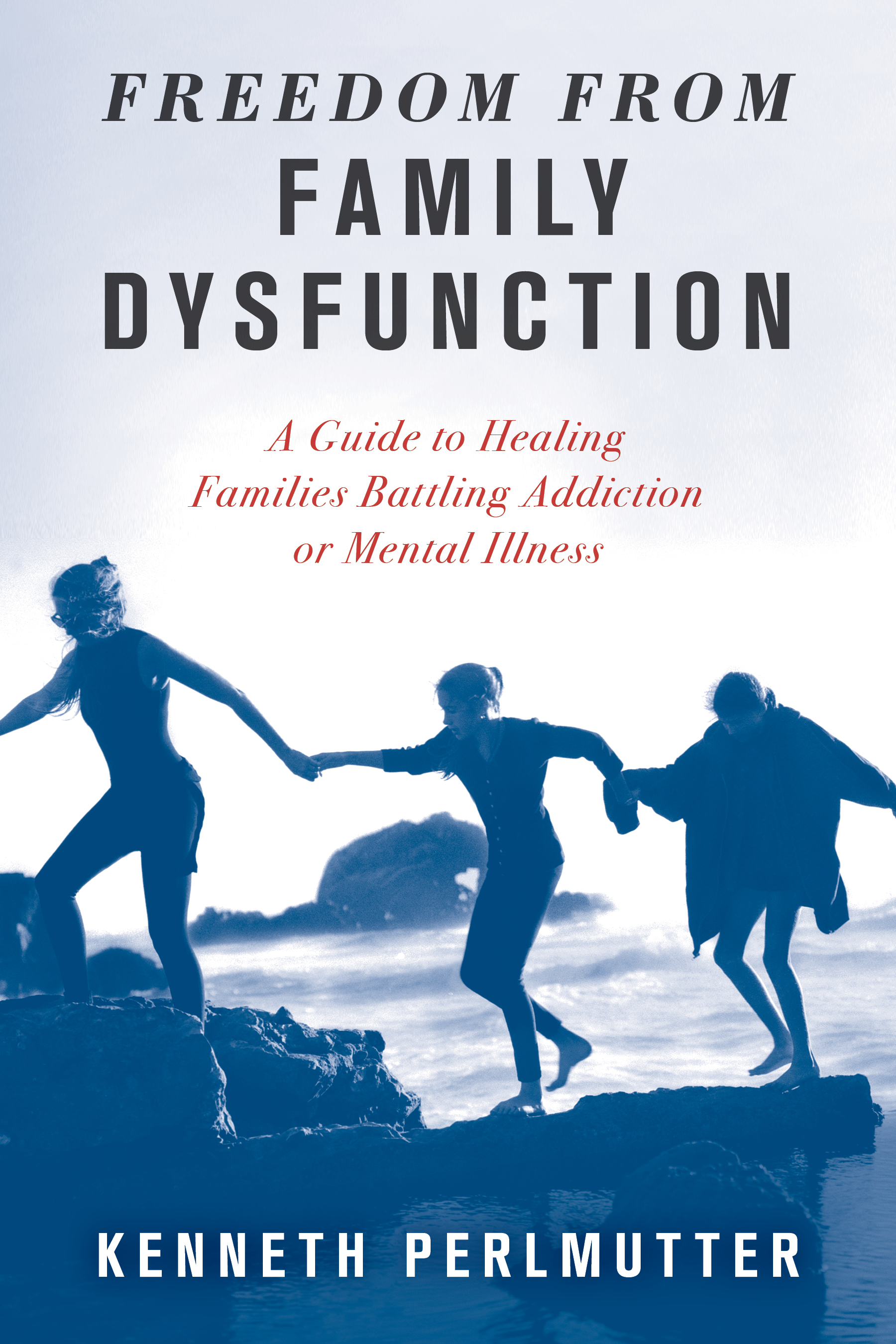 Freedom from Family Dysfunction: A Guide to Healing Families Battling Addiction or Mental Illness