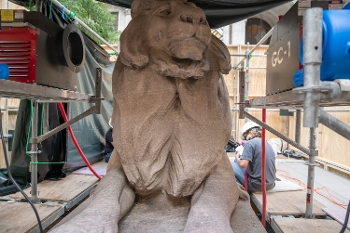 NYPL's Lions Get a Makeover
