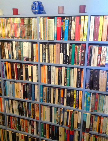 Organizing the Books in Your Home, Part 2: Getting To Know the Genres
