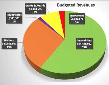 pie chart from ALA council showing revenues
